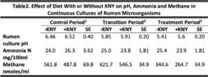 Influence of Kent Natural Yeast on Rumen Dynamics